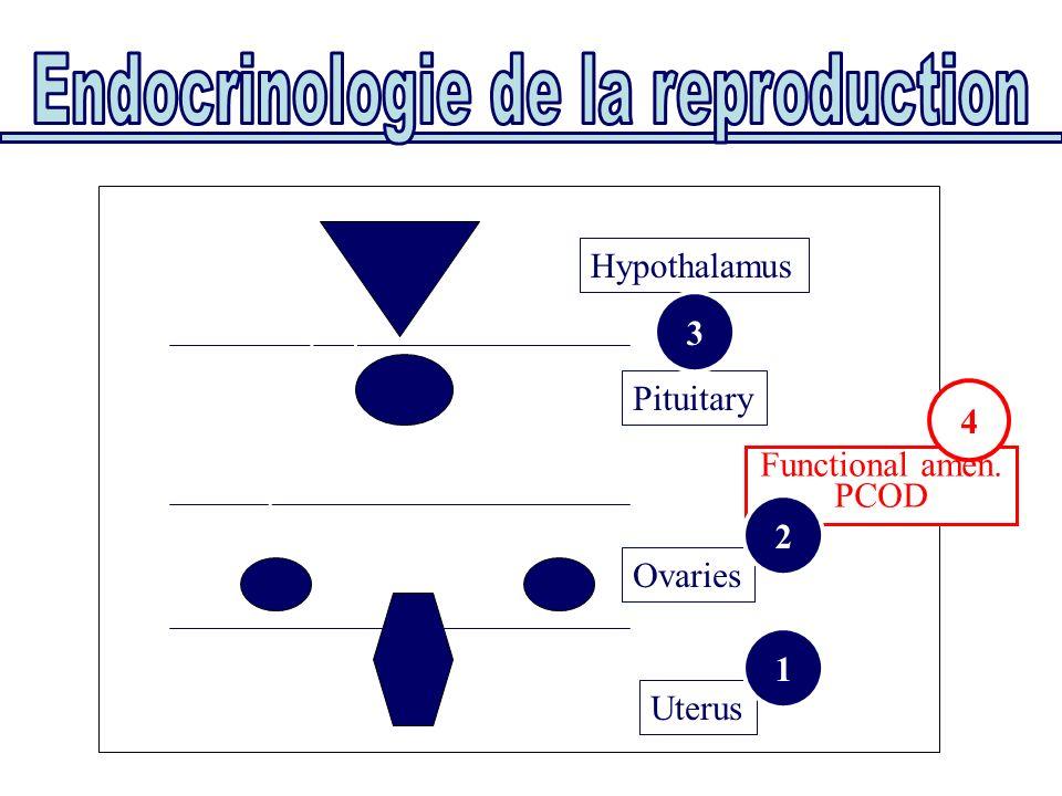 Uterus Ovaries Pituitary Hypothalamus Functional amen. PCOD 1 3 2 4