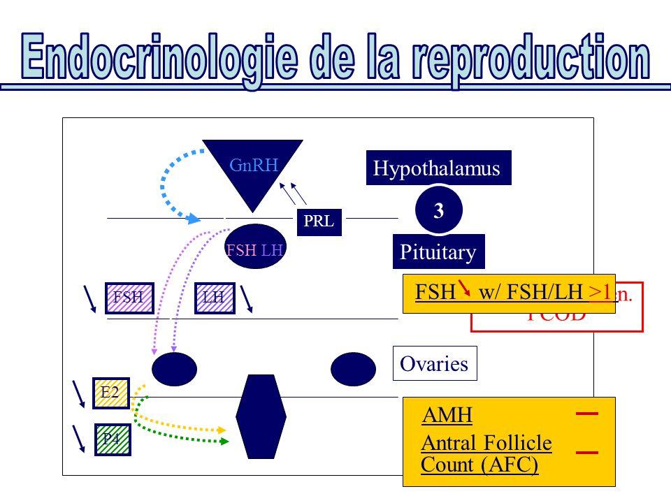 Uterus Ovaries Pituitary Hypothalamus E2 P4 FSH/LH GnRH FSHLH PRL 3 AMH Antral Follicle Count (AFC) Functional amen. PCOD FSH w/ FSH/LH >1