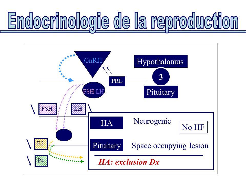 Pituitary Hypothalamus FSH/LH GnRH PRL Uterus Ovaries E2 P4 FSHLH HA Neurogenic PRL PituitarySpace occupying lesion HA: exclusion Dx No HF 3