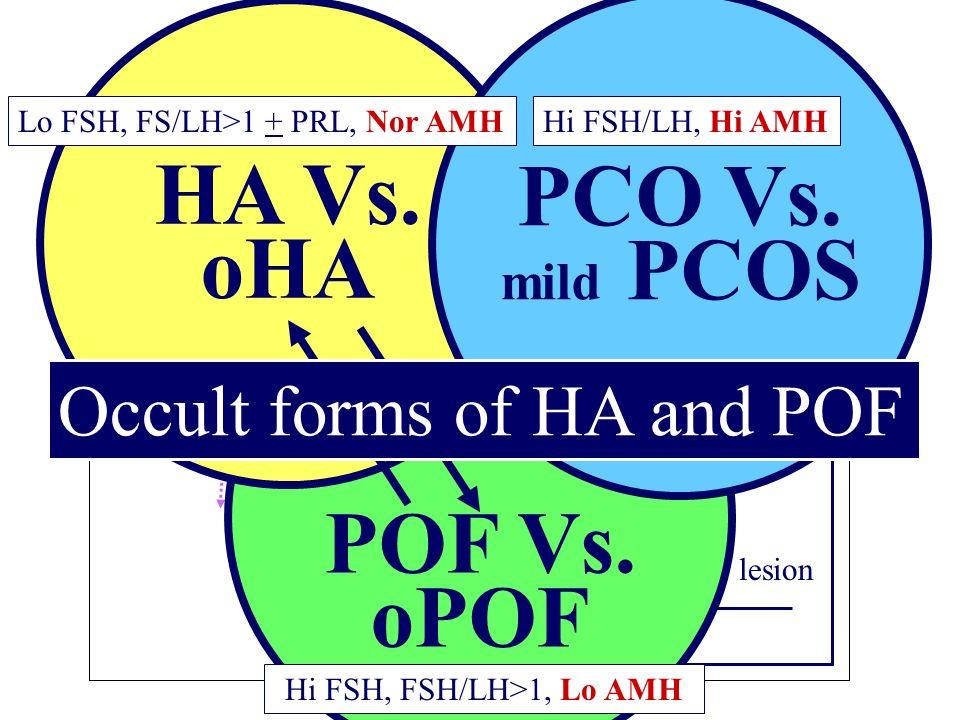 Pituitary Hypothalamus FSHLH FSH/LH GnRH PRL Aménohrées II: Approche diagnostique HA Neurogenic PRL PituitarySpace occupying lesion HA: exclusion Dx C
