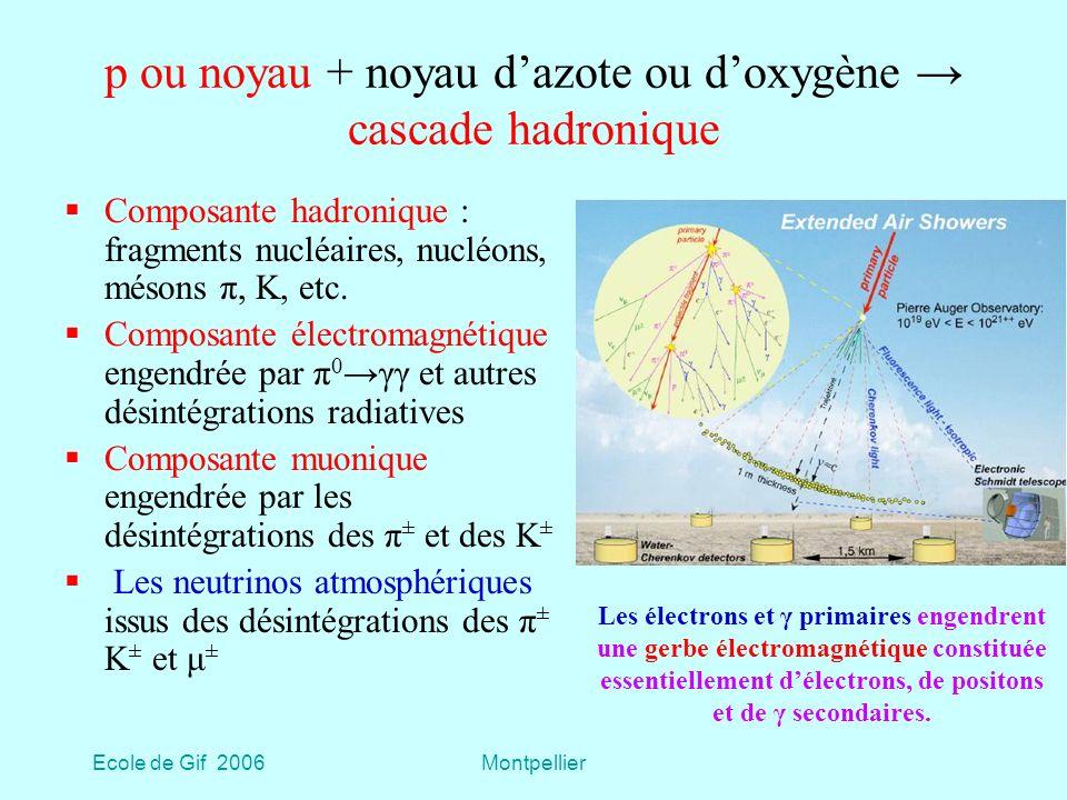 Ecole de Gif 2006Montpellier p ou noyau + noyau dazote ou doxygène cascade hadronique Composante hadronique : fragments nucléaires, nucléons, mésons π, K, etc.