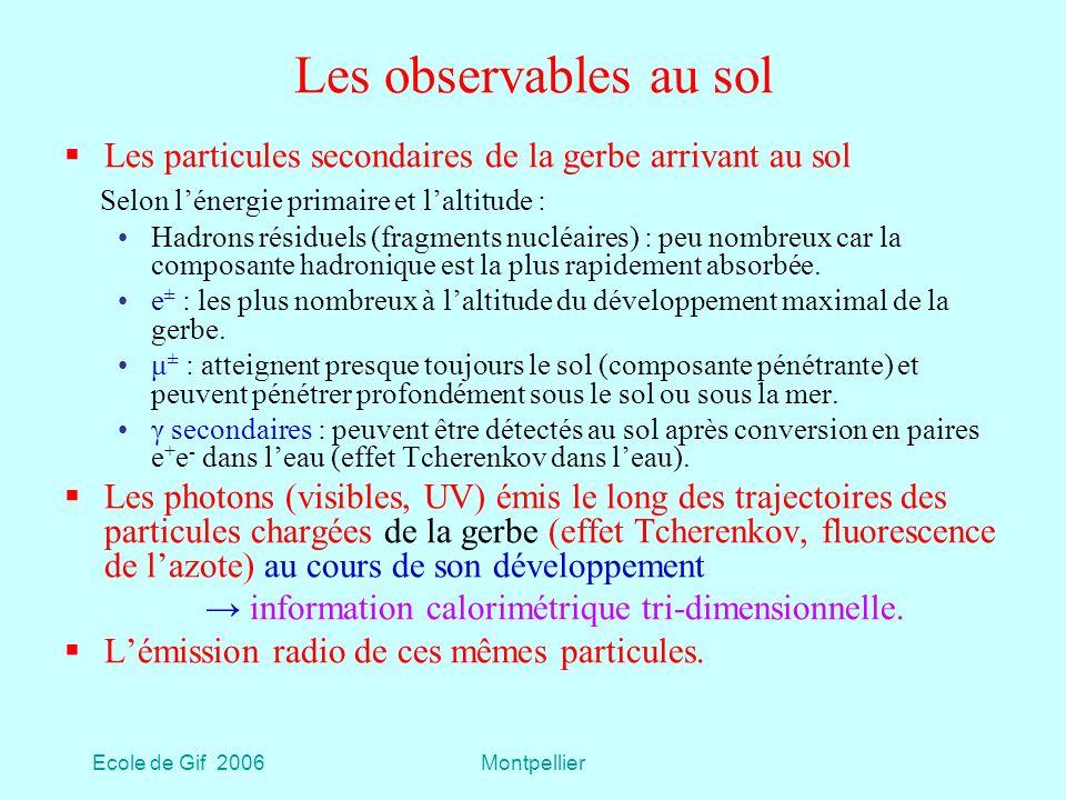 Ecole de Gif 2006Montpellier Les observables au sol Les particules secondaires de la gerbe arrivant au sol Selon lénergie primaire et laltitude : Hadrons résiduels (fragments nucléaires) : peu nombreux car la composante hadronique est la plus rapidement absorbée.
