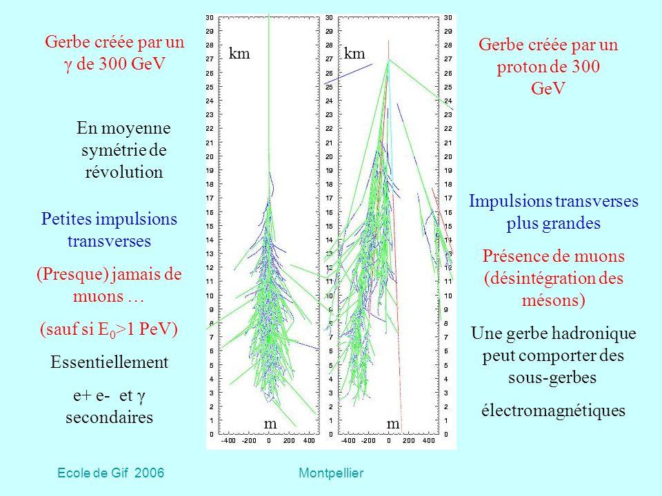 Ecole de Gif 2006Montpellier Gerbe créée par un γ de 300 GeV Gerbe créée par un proton de 300 GeV Petites impulsions transverses (Presque) jamais de muons … (sauf si E 0 >1 PeV) Essentiellement e+ e- et γ secondaires Impulsions transverses plus grandes Présence de muons (désintégration des mésons) Une gerbe hadronique peut comporter des sous-gerbes électromagnétiques En moyenne symétrie de révolution km mm
