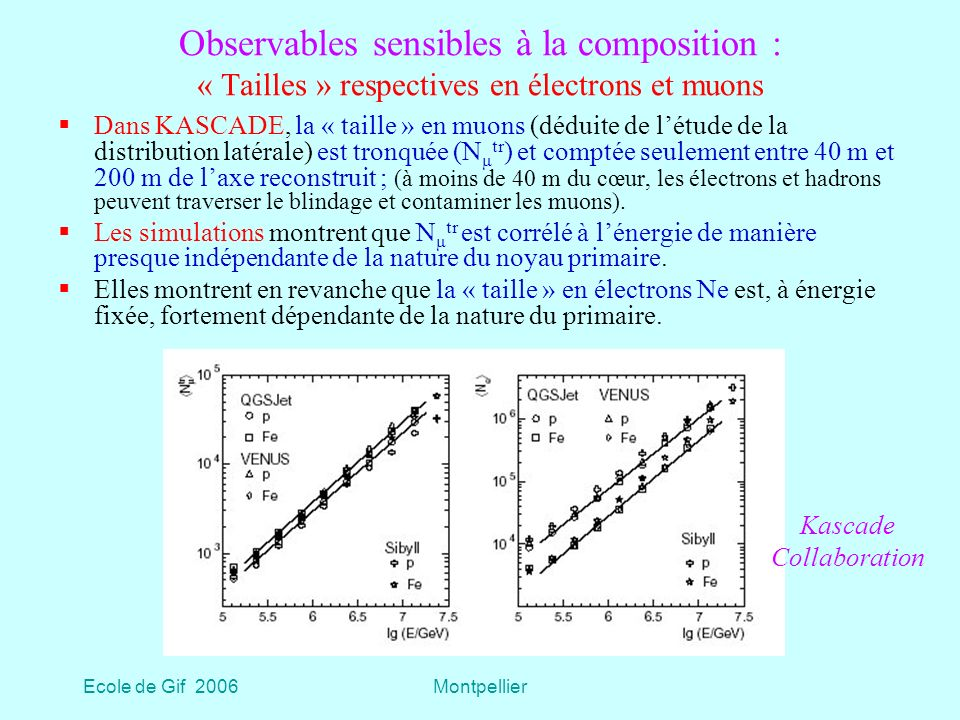 Ecole de Gif 2006Montpellier Observables sensibles à la composition : « Tailles » respectives en électrons et muons Dans KASCADE, la « taille » en muons (déduite de létude de la distribution latérale) est tronquée (N μ tr ) et comptée seulement entre 40 m et 200 m de laxe reconstruit ; (à moins de 40 m du cœur, les électrons et hadrons peuvent traverser le blindage et contaminer les muons).