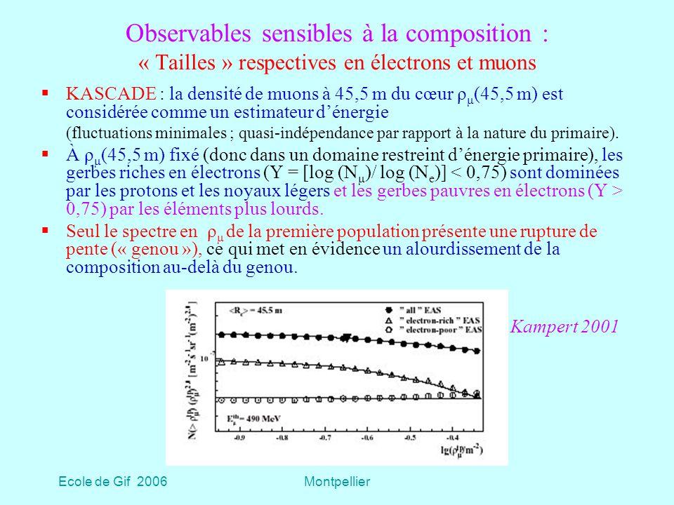 Ecole de Gif 2006Montpellier Observables sensibles à la composition : « Tailles » respectives en électrons et muons KASCADE : la densité de muons à 45,5 m du cœur ρ μ (45,5 m) est considérée comme un estimateur dénergie (fluctuations minimales ; quasi-indépendance par rapport à la nature du primaire).
