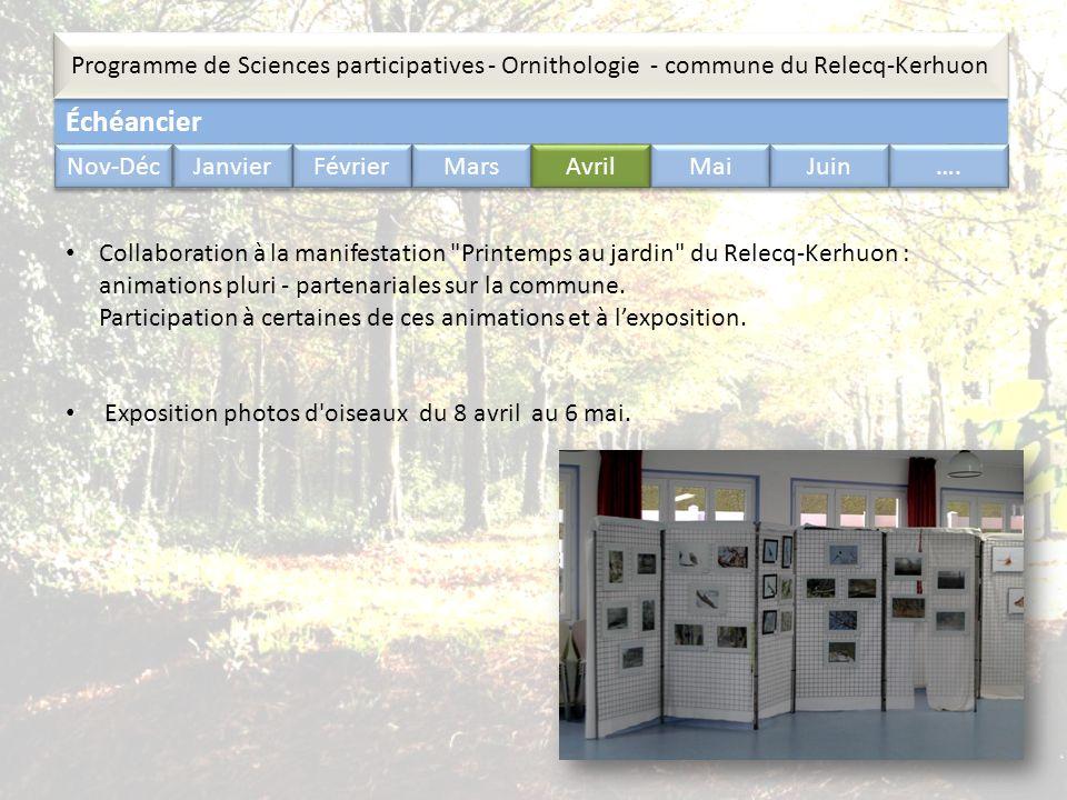 Échéancier Programme de Sciences participatives - Ornithologie - commune du Relecq-Kerhuon Nov-Déc Janvier Février Mars Avril Mai Juin …. Collaboratio