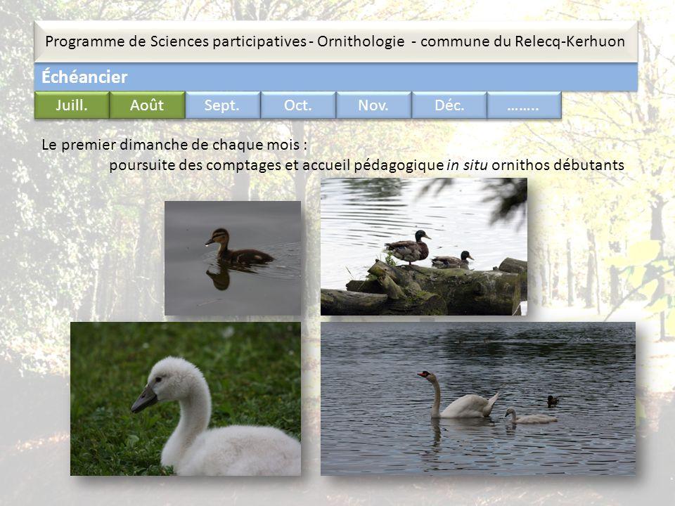 Échéancier Programme de Sciences participatives - Ornithologie - commune du Relecq-Kerhuon …….. Juill. Août Sept. Oct. Nov. Déc. Le premier dimanche d