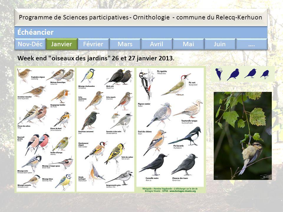 Échéancier Programme de Sciences participatives - Ornithologie - commune du Relecq-Kerhuon Nov-Déc Janvier Février Mars Avril Mai Juin …. Week end