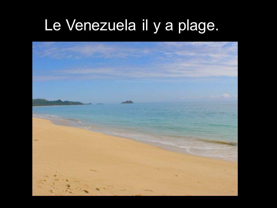 On trouve le montagnes le Venezuela.