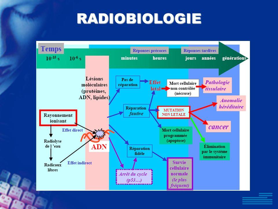RADIOBIOLOGIE