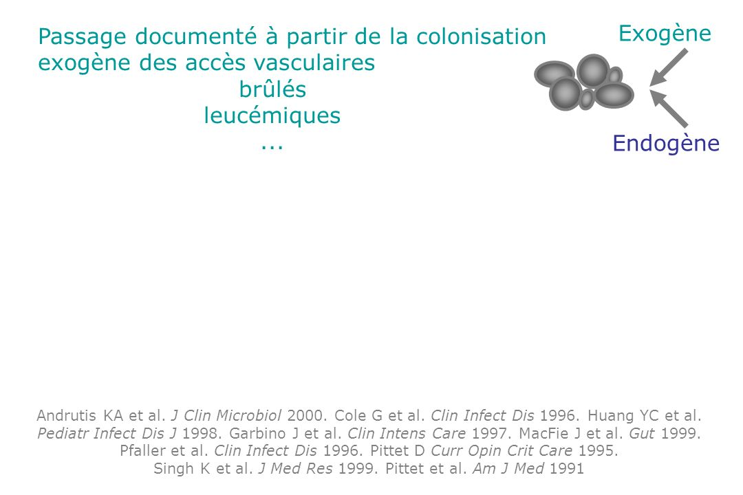 Exogène Endogène Andrutis KA et al. J Clin Microbiol 2000. Cole G et al. Clin Infect Dis 1996. Huang YC et al. Pediatr Infect Dis J 1998. Garbino J et