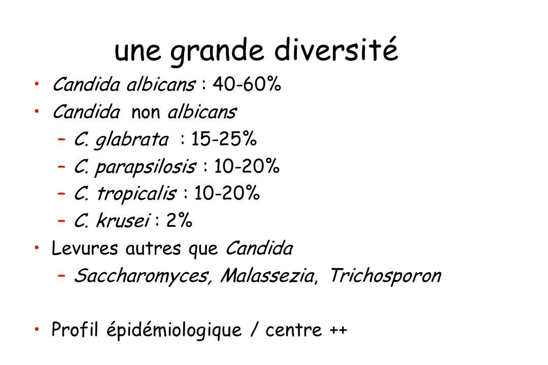 une grande diversité Candida albicans : 40-60% Candida non albicans –C. glabrata : 15-25% –C. parapsilosis : 10-20% –C. tropicalis : 10-20% –C. krusei