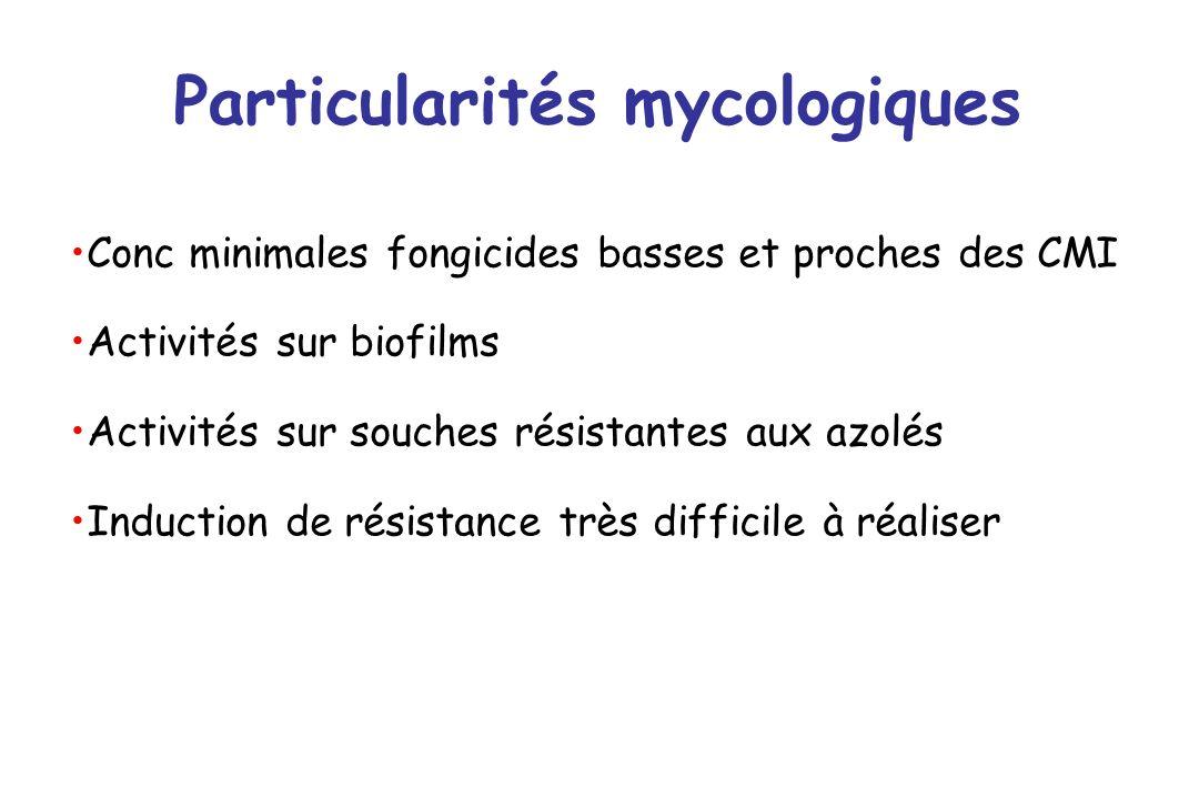 Particularités mycologiques Conc minimales fongicides basses et proches des CMI Activités sur biofilms Activités sur souches résistantes aux azolés In