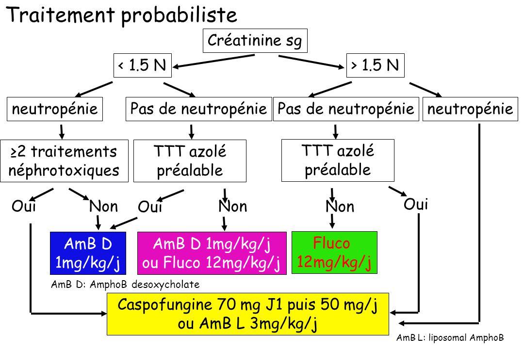 Traitement probabiliste Créatinine sg < 1.5 N> 1.5 N neutropénie 2 traitements néphrotoxiques OuiNon AmB D 1mg/kg/j ou Fluco 12mg/kg/j neutropénie Flu