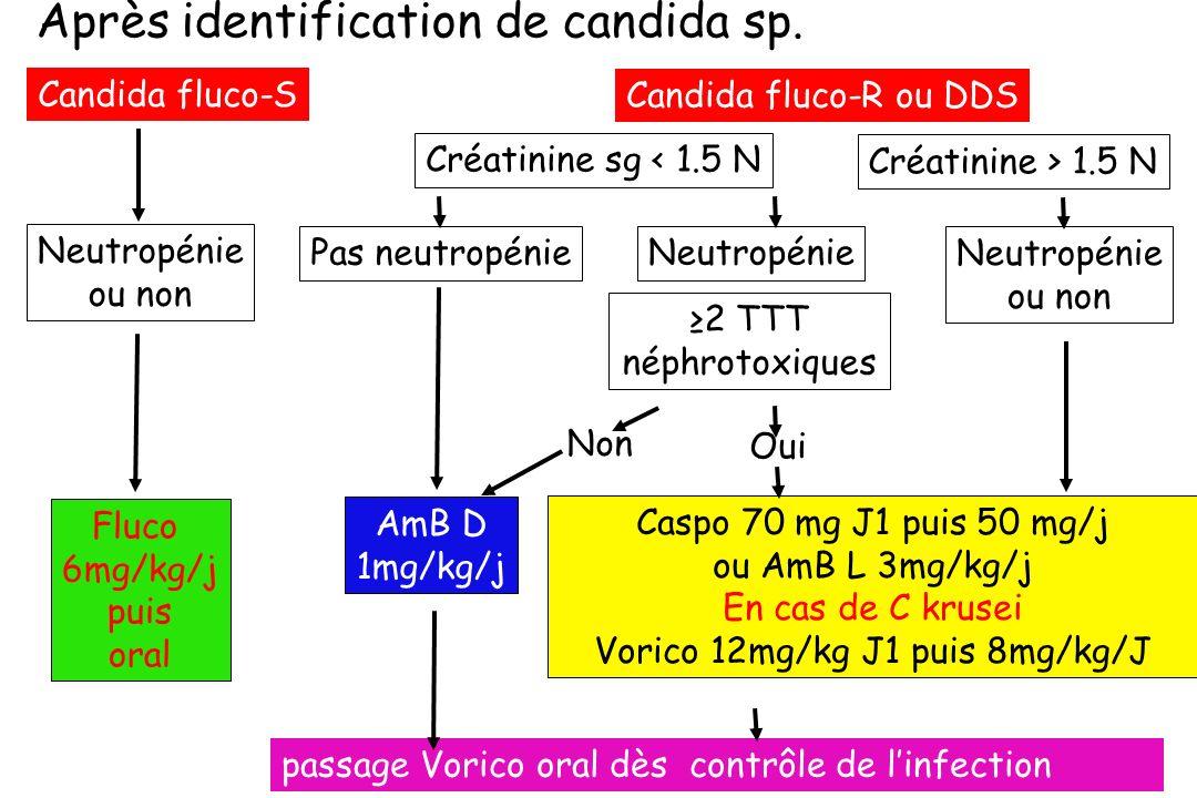 Après identification de candida sp. Non AmB D 1mg/kg/j Candida fluco-R ou DDS Candida fluco-S Pas neutropénie Créatinine > 1.5 N Caspo 70 mg J1 puis 5