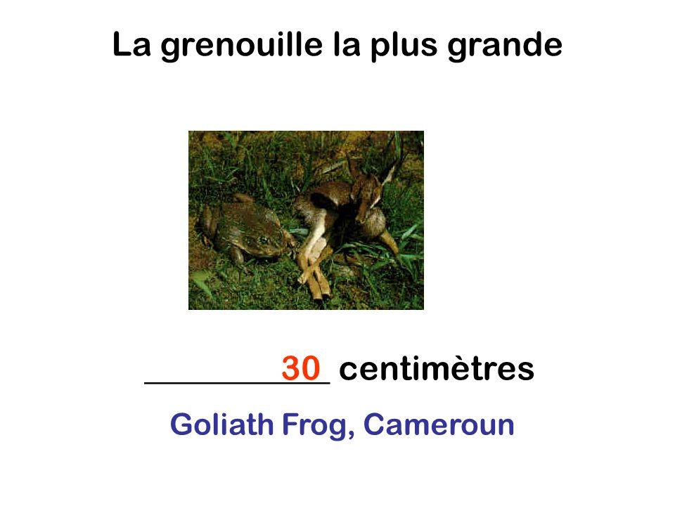 La grenouille la plus grande ___________ centimètres30 Goliath Frog, Cameroun