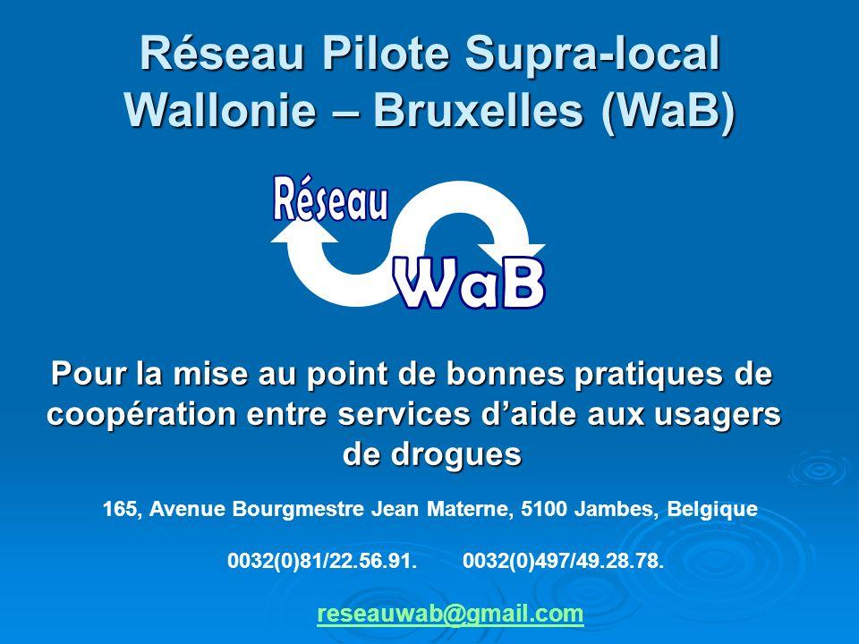 Réseau Pilote Supra-local Wallonie – Bruxelles (WaB) Avec le soutien de la Ministre de la Santé, de lAction sociale et de lEgalité des chances de la Région wallonne.