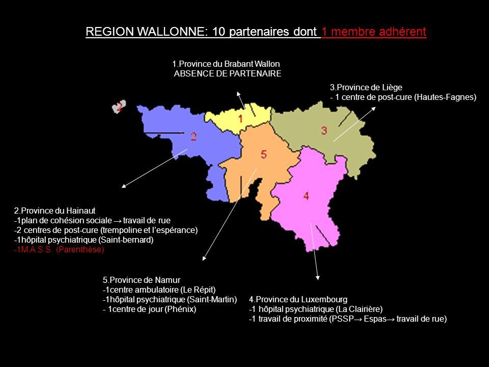 3.Province de Liège - 1 centre de post- cure (Hautes-Fagnes) 4.Province du Luxembourg -1 hôpital psychiatrique (La Clairière) -1 service de prévention