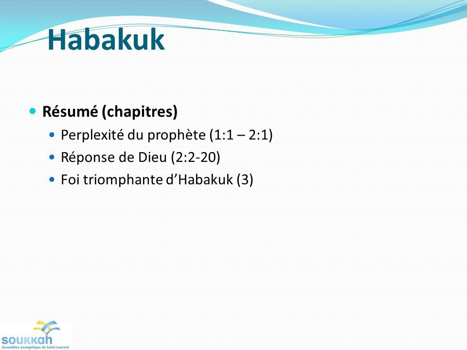 Habakuk Résumé (chapitres) Perplexité du prophète (1:1 – 2:1) Réponse de Dieu (2:2-20) Foi triomphante dHabakuk (3)