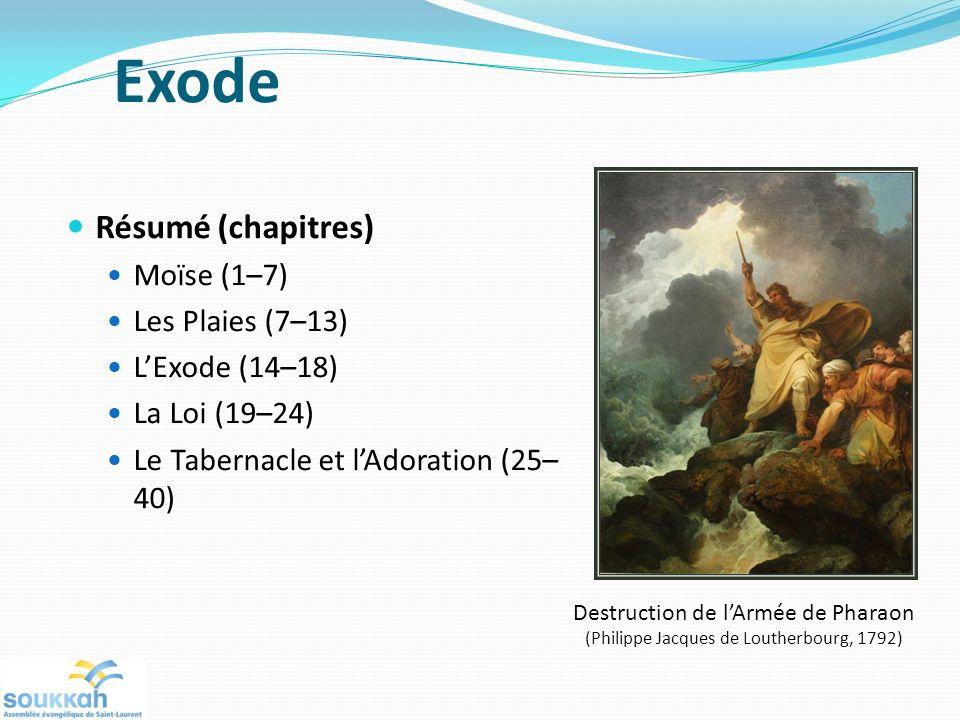Résumé (chapitres) Moïse (1–7) Les Plaies (7–13) LExode (14–18) La Loi (19–24) Le Tabernacle et lAdoration (25– 40) Destruction de lArmée de Pharaon (