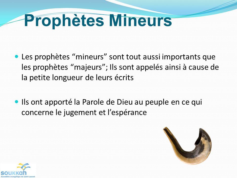 Prophètes Mineurs Les prophètes mineurs sont tout aussi importants que les prophètes majeurs; Ils sont appelés ainsi à cause de la petite longueur de leurs écrits Ils ont apporté la Parole de Dieu au peuple en ce qui concerne le jugement et lespérance