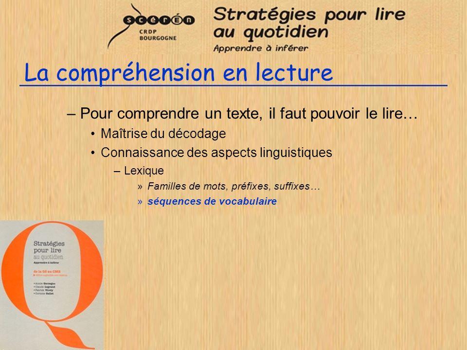 La compréhension en lecture –Pour comprendre un texte, il faut pouvoir le lire… Maîtrise du décodage Connaissance des aspects linguistiques –Lexique »