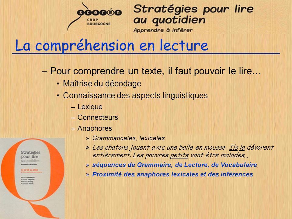 La compréhension en lecture –Pour comprendre un texte, il faut pouvoir le lire… Maîtrise du décodage Connaissance des aspects linguistiques –Lexique –