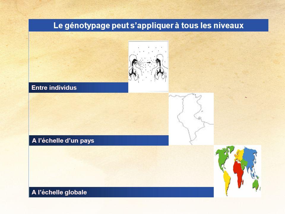 A léchelle globale A léchelle dun pays Le génotypage peut sappliquer à tous les niveaux Entre individus