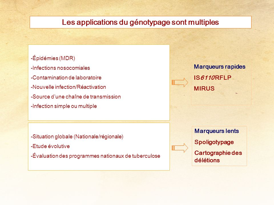 Les applications du génotypage sont multiples -Épidémies (MDR) -Infections nosocomiales -Contamination de laboratoire -Nouvelle infection/Réactivation -Source dune chaîne de transmission -Infection simple ou multiple -Situation globale (Nationale/régionale) -Etude évolutive -Évaluation des programmes nationaux de tuberculose Marqueurs rapides IS6110 RFLP MIRUS Marqueurs lents Spoligotypage Cartographie des délétions