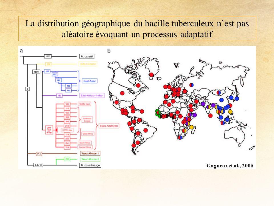 Gagneux et al., 2006 La distribution géographique du bacille tuberculeux nest pas aléatoire évoquant un processus adaptatif