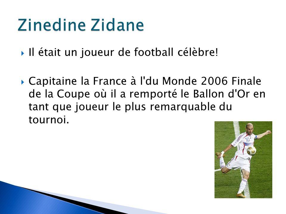 Zidane a ensuite été expulsé à la 110e minute du match après coup de tête de Marco Materazzi, qui venait d insulter sa sœur.