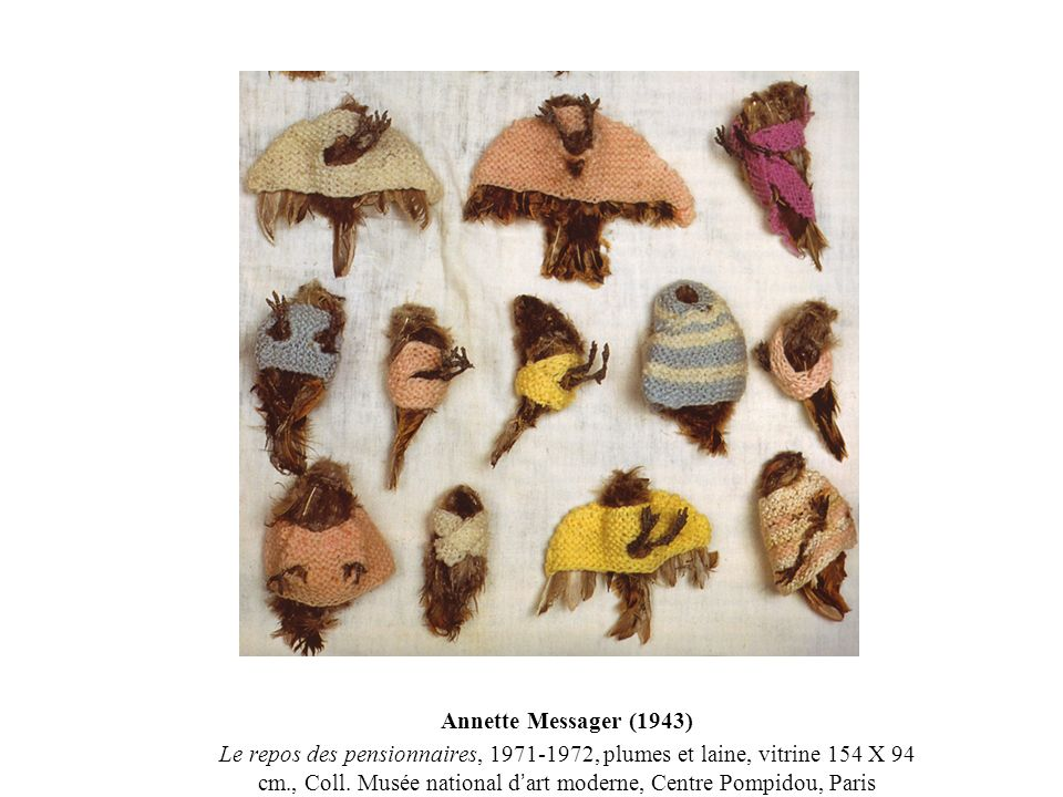 Annette Messager (1943) Le repos des pensionnaires, 1971-1972, plumes et laine, vitrine 154 X 94 cm., Coll. Musée national d art moderne, Centre Pompi