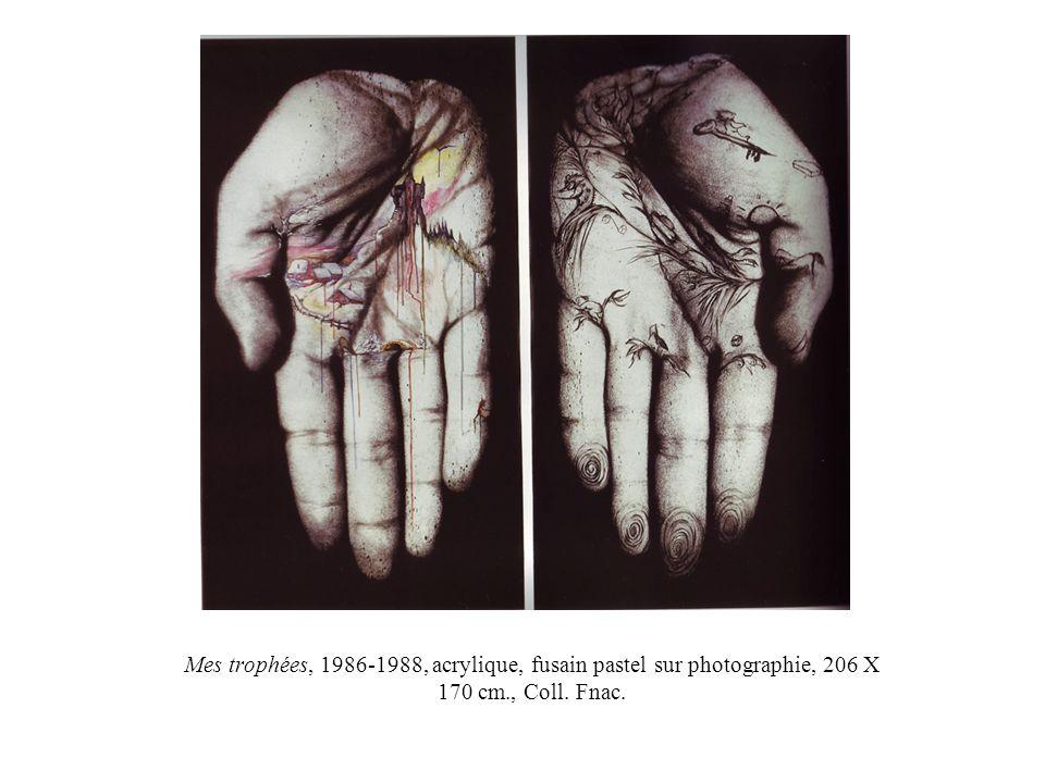 Mes trophées, 1986-1988, acrylique, fusain pastel sur photographie, 206 X 170 cm., Coll. Fnac.