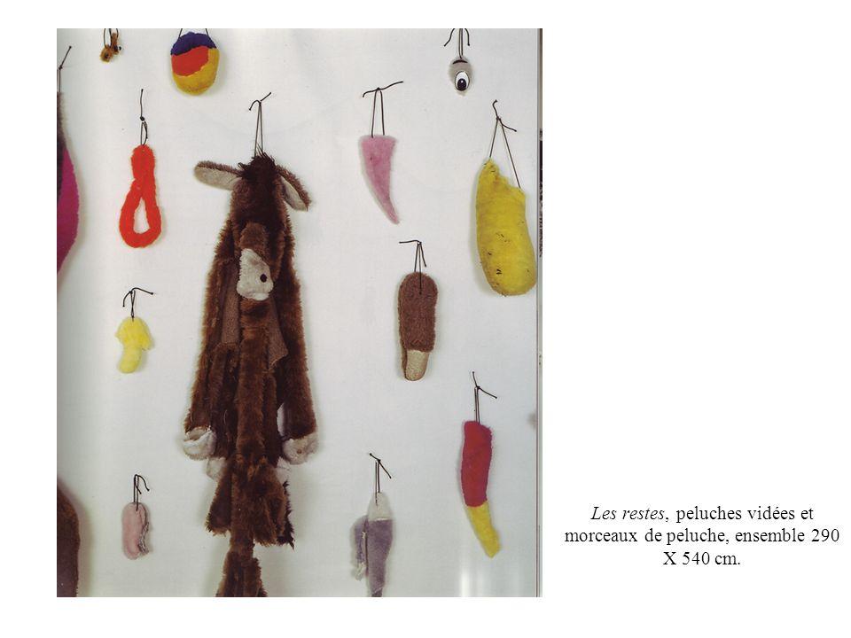 Les restes, peluches vidées et morceaux de peluche, ensemble 290 X 540 cm.
