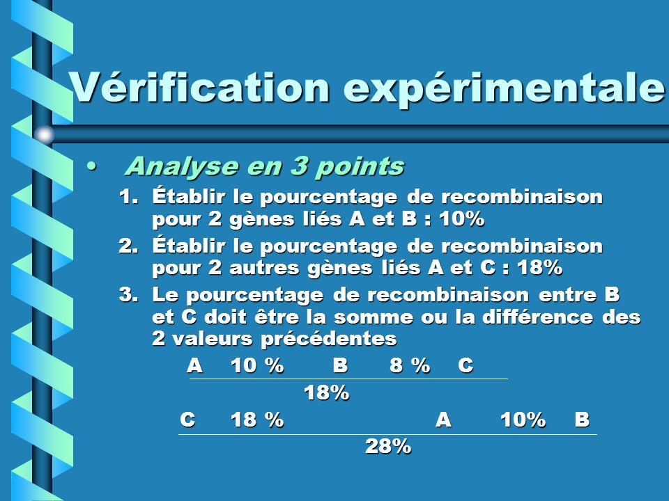 Vérification expérimentale Analyse en 3 pointsAnalyse en 3 points 1.Établir le pourcentage de recombinaison pour 2 gènes liés A et B : 10% 2.Établir le pourcentage de recombinaison pour 2 autres gènes liés A et C : 18% 3.Le pourcentage de recombinaison entre B et C doit être la somme ou la différence des 2 valeurs précédentes A 10 % B 8 % C A 10 % B 8 % C 18% 18% C 18 % A 10% B C 18 % A 10% B 28% 28%