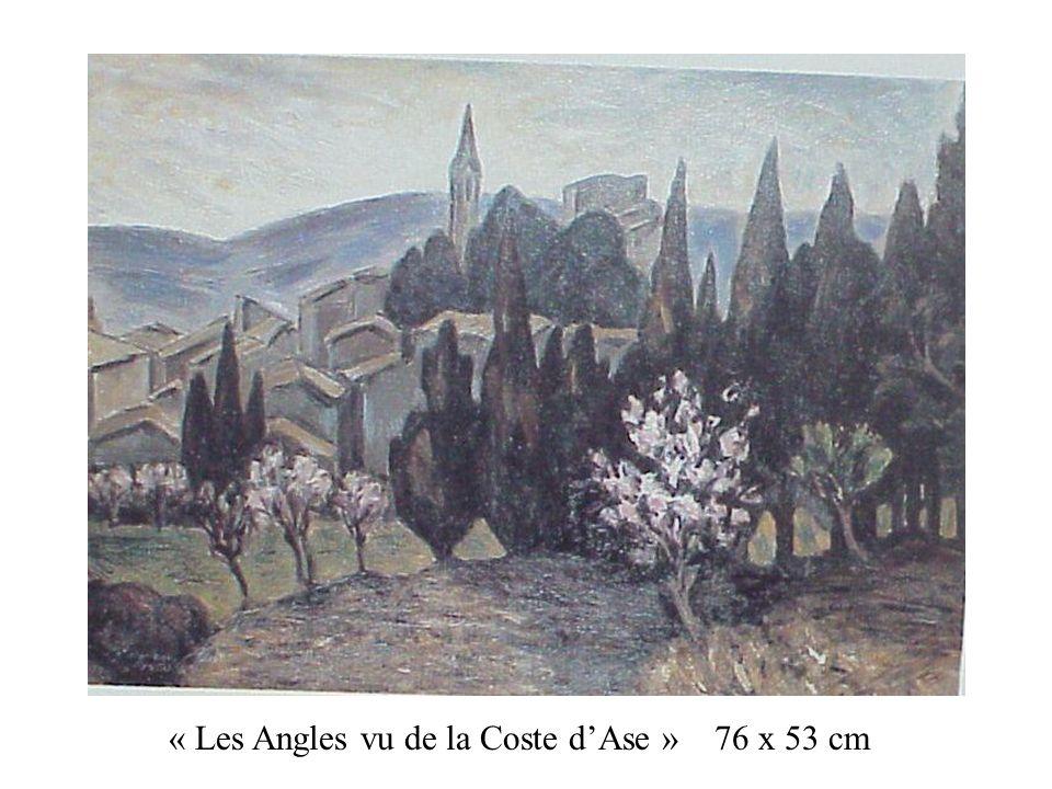 « Les Angles vu de la Coste dAse » 76 x 53 cm