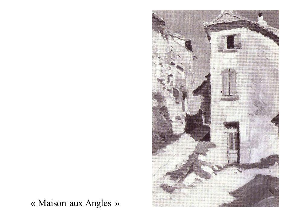 « Maison aux Angles »