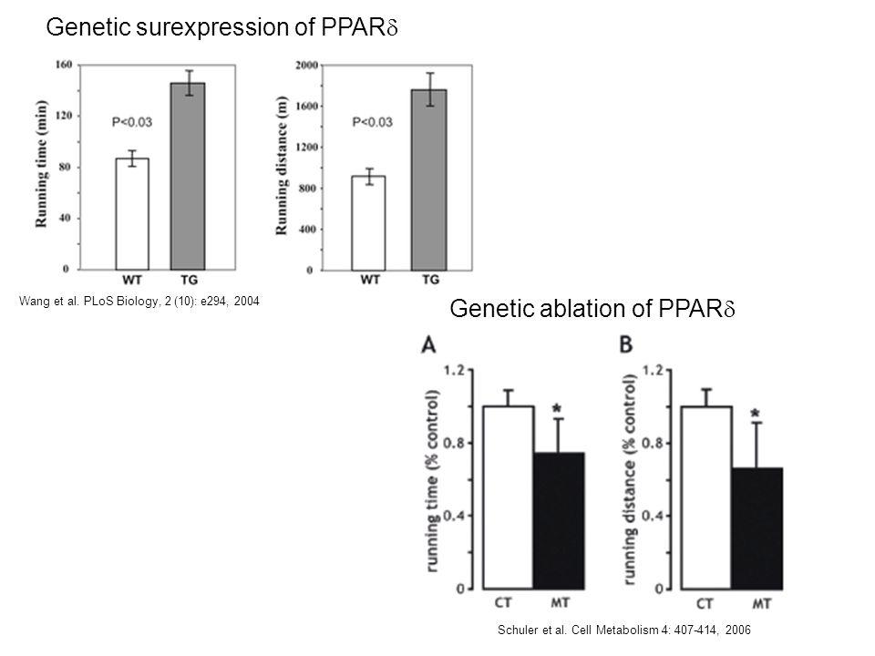 Genetic surexpression of PPAR Wang et al. PLoS Biology, 2 (10): e294, 2004 Genetic ablation of PPAR Schuler et al. Cell Metabolism 4: 407-414, 2006