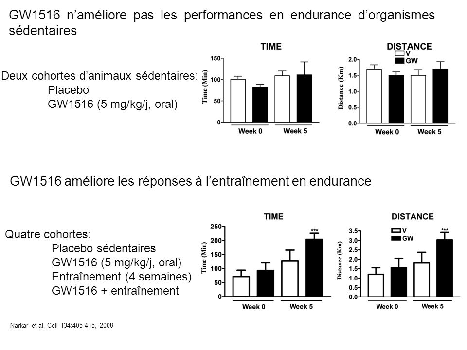 GW1516 naméliore pas les performances en endurance dorganismes sédentaires Deux cohortes danimaux sédentaires: Placebo GW1516 (5 mg/kg/j, oral) Narkar