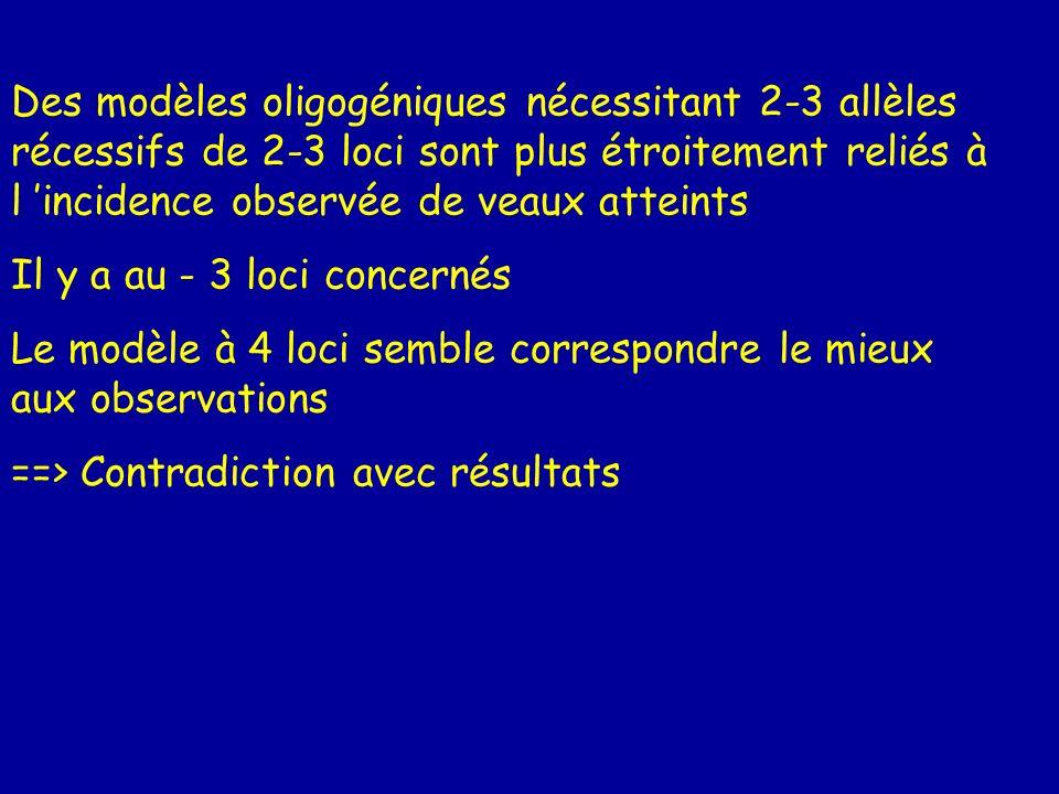 Des modèles oligogéniques nécessitant 2-3 allèles récessifs de 2-3 loci sont plus étroitement reliés à l incidence observée de veaux atteints Il y a a