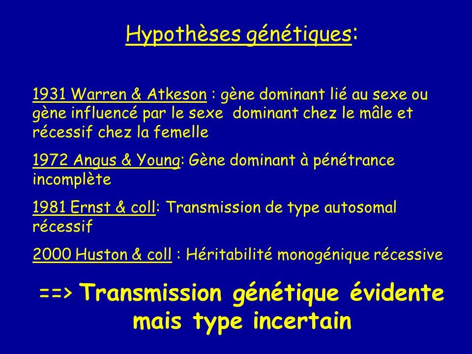 Hypothèses génétiques : 1931 Warren & Atkeson : gène dominant lié au sexe ou gène influencé par le sexe dominant chez le mâle et récessif chez la feme