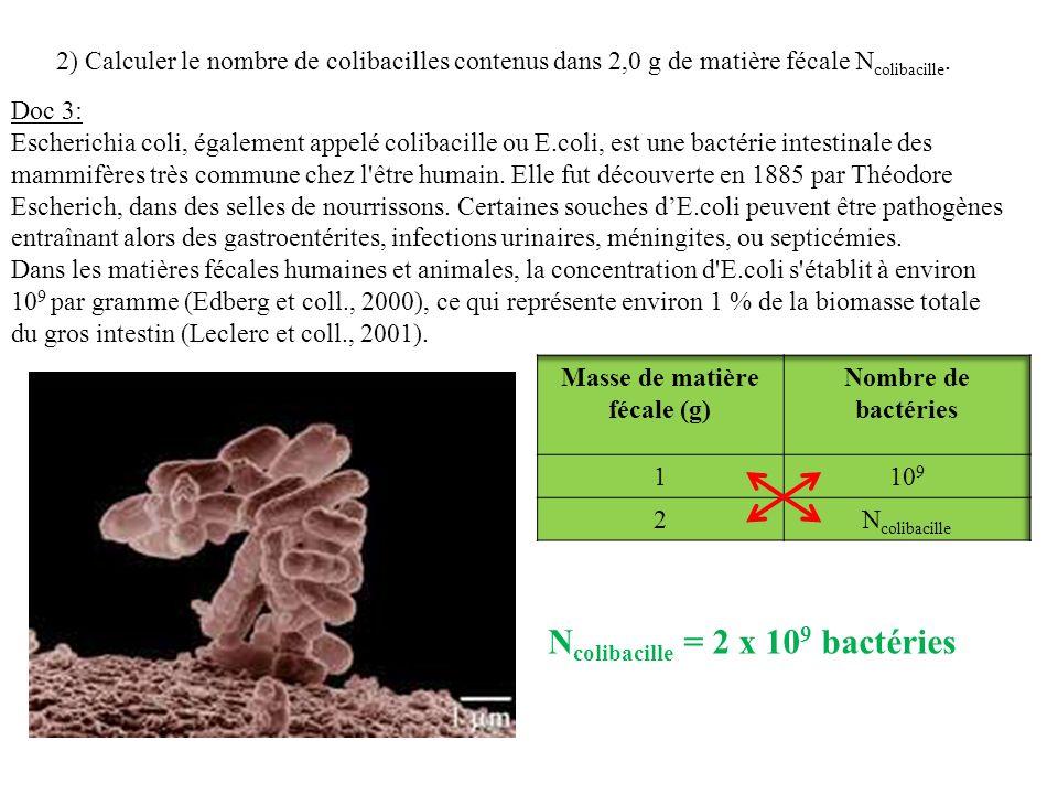 2) Calculer le nombre de colibacilles contenus dans 2,0 g de matière fécale N colibacille. Doc 3: Escherichia coli, également appelé colibacille ou E.