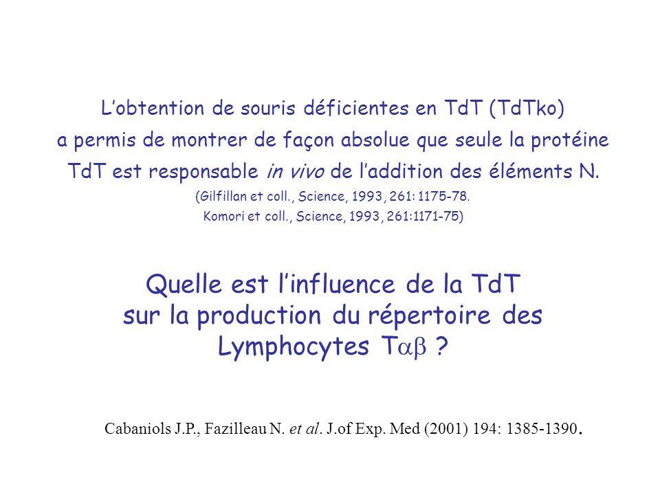 Lobtention de souris déficientes en TdT (TdTko) a permis de montrer de façon absolue que seule la protéine TdT est responsable in vivo de laddition de