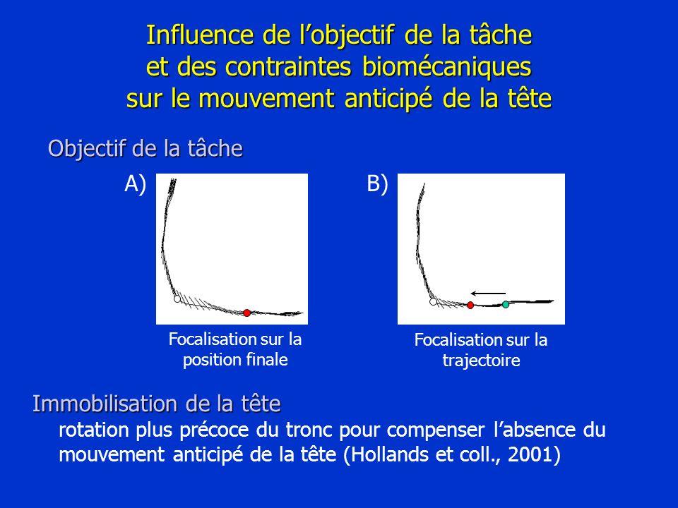 B) Focalisation sur la trajectoire A) Focalisation sur la position finale Influence de lobjectif de la tâche et des contraintes biomécaniques sur le m
