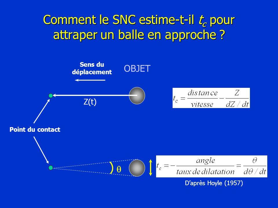 Comment le SNC estime-t-il t c pour attraper un balle en approche ? Z(t) OBJET Sens du déplacement Point du contact Daprès Hoyle (1957)