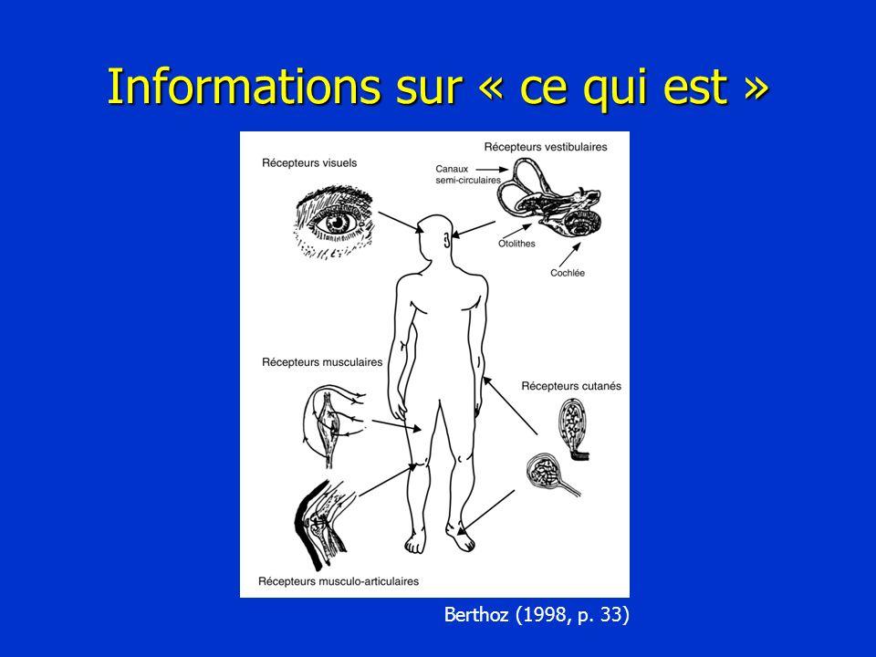 Informations sur « ce qui est » Berthoz (1998, p. 33)
