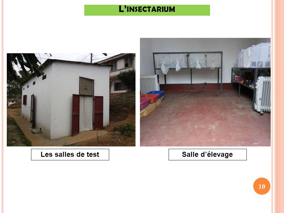 10 Salle délevageLes salles de test L INSECTARIUM