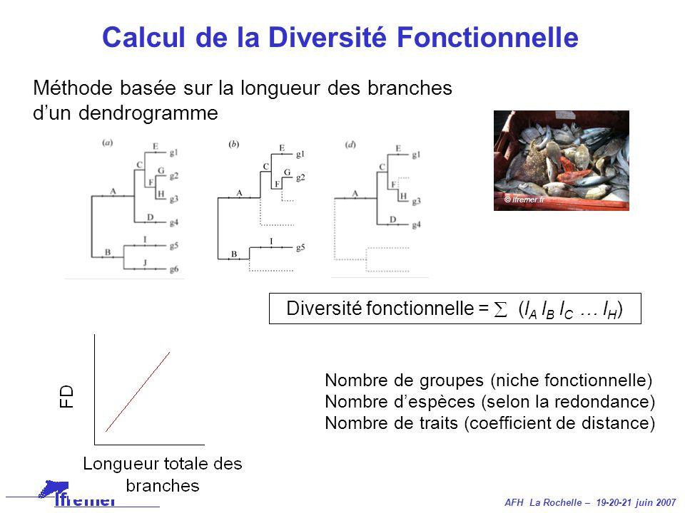 AFH La Rochelle – 19-20-21 juin 2007 Calcul de la Diversité Fonctionnelle Méthode basée sur la longueur des branches dun dendrogramme Nombre de groupe