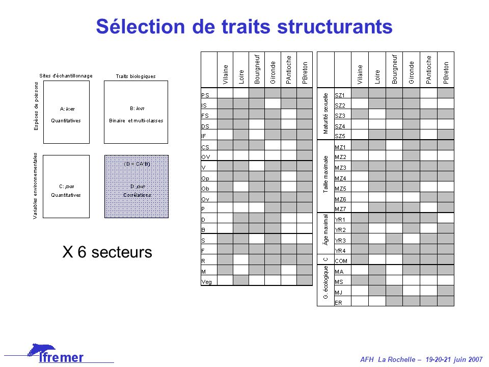 Sélection de traits structurants X 6 secteurs
