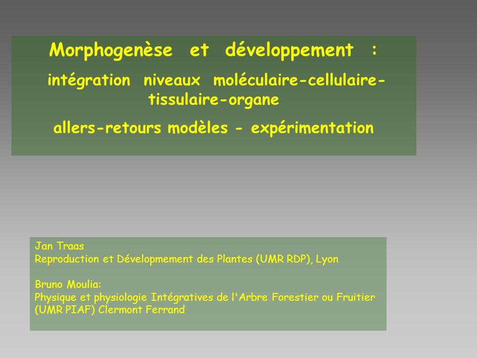 Morphogenèse et développement : intégration niveaux moléculaire-cellulaire- tissulaire-organe allers-retours modèles - expérimentation Jan Traas Repro